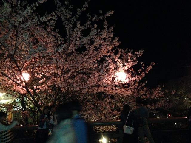 ぶらり夜散歩